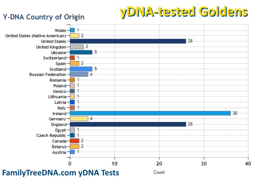 Golden yDNA Testing and Origins - FamilyTreeDNA