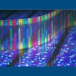 DNA Genetic Genealogy